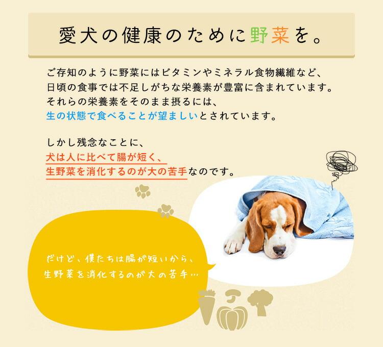 犬は生野菜の消化が苦手。だから野菜の栄養をそのまま吸収することができません