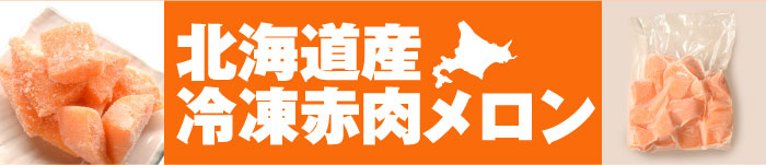 業務用 北海道産冷凍赤肉メロン 1kg