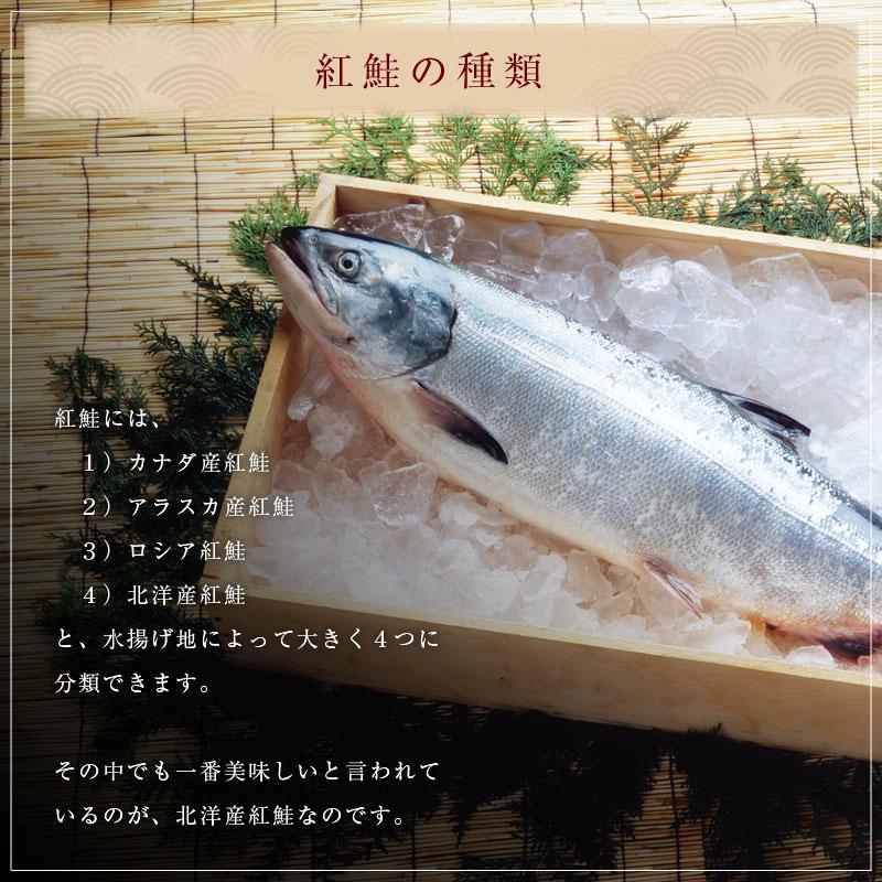 紅鮭の種類