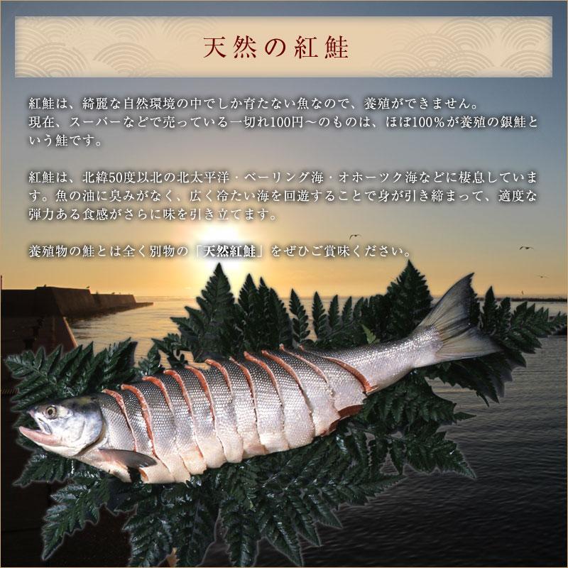 天然の紅鮭