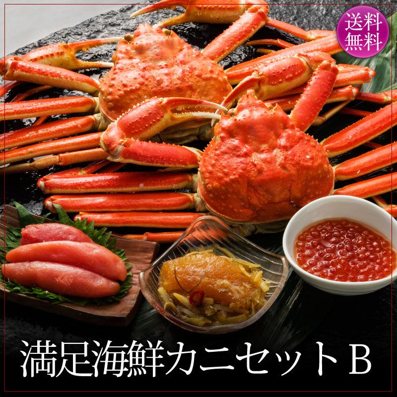 満足海鮮カニセットB
