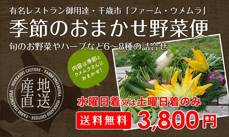 ファームウメムラ 季節のおまかせ野菜便