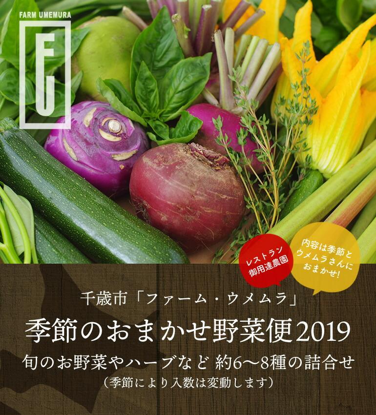 千歳市 — ファームウメムラ『季節のおまかせ野菜便』