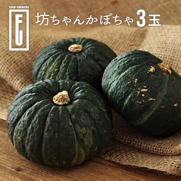 ファームウメムラ 坊ちゃんかぼちゃ 3玉