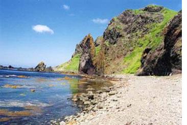礼文島は北海道最北端の島/岬の画像