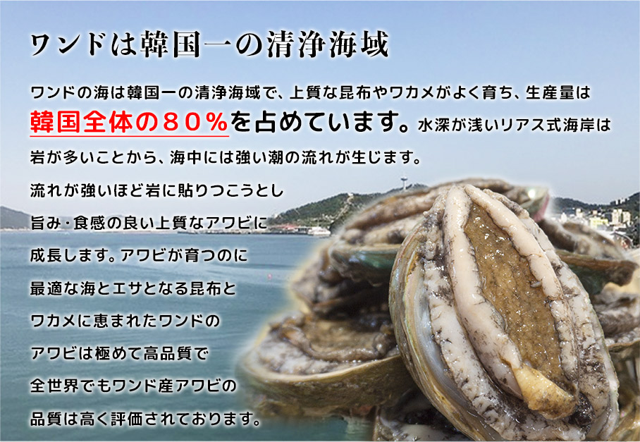 蝦夷アワビ/ワンドは韓国一の清浄海域