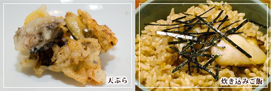 蝦夷アワビ/天ぷら/炊き込みご飯