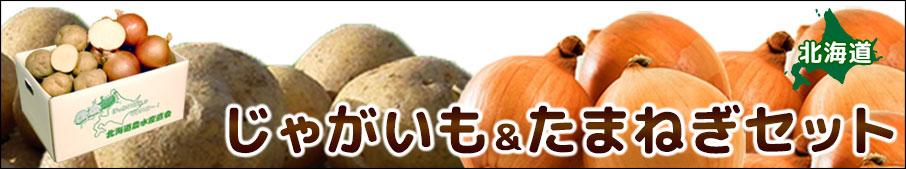 北海道/野菜/ギフト/通販/セット/送料無料