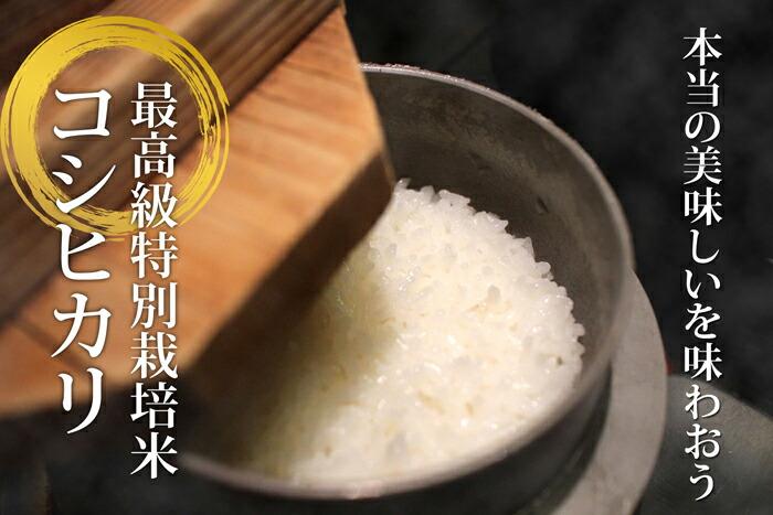 本当に美味しいコシヒカリ 特別栽培米 味わう