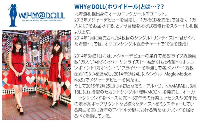whydoll-introduce.jpg