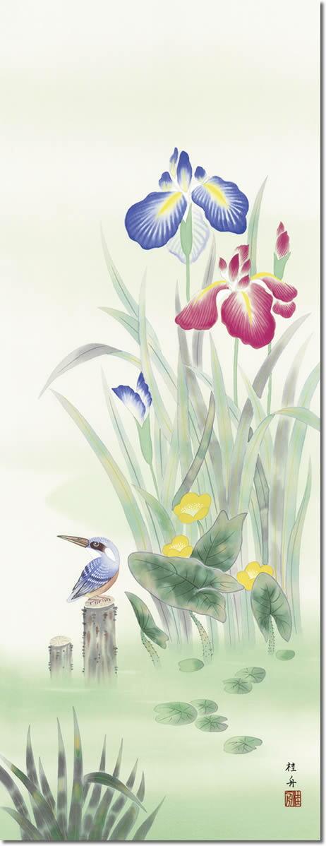 掛け軸-菖蒲にかわせみ/長江桂舟(尺五・桐箱・風鎮付き)花鳥画掛軸