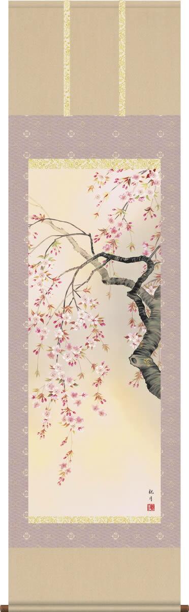 掛け軸-桜花爛漫/森山観月(尺五・桐箱・風鎮付き)花鳥画掛軸
