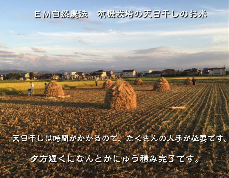 JAS認定無農薬有機栽培天日干しコシヒカリ