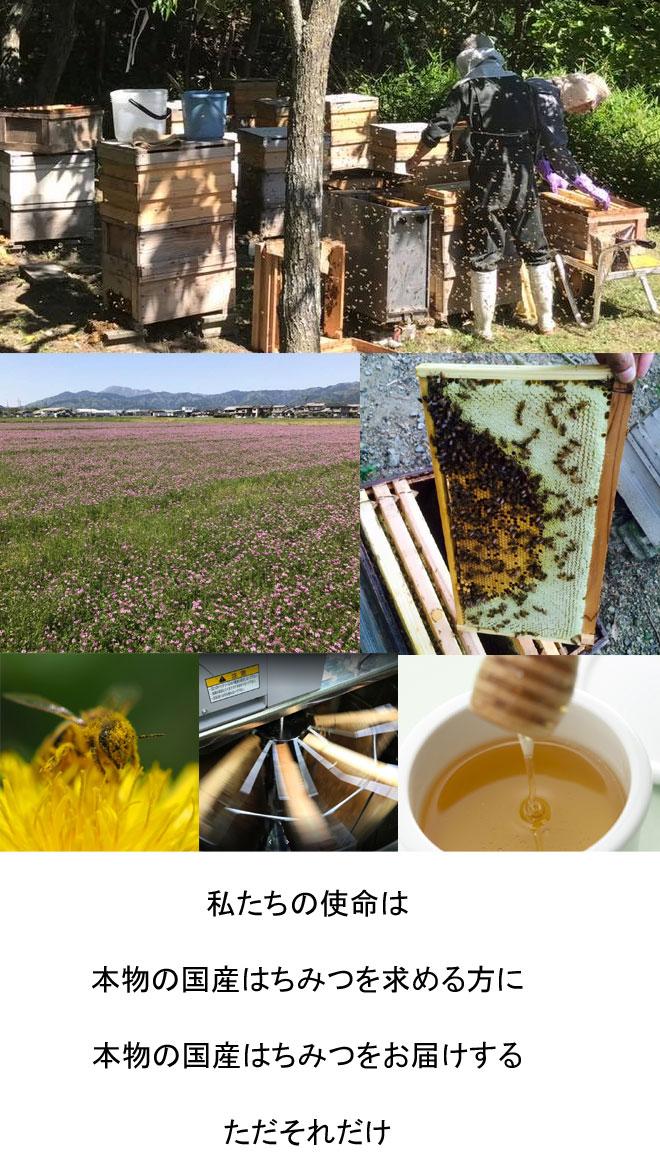 国産はちみつ 春日養蜂場 私たちが生産しお届けしています。
