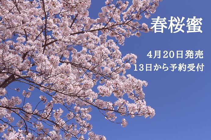 春桜蜜 1kg