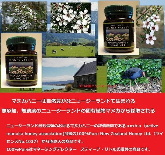 エコの国から来た蜂蜜