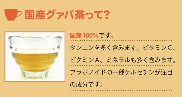 国産グァバ茶