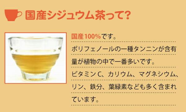 国産シジュウム茶