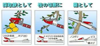 日本製高枝切鋏