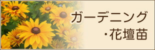 ガーデニング・花壇苗