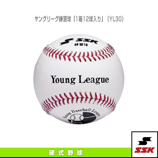 ヤングリーグ練習球『1箱12球入り』(YL30)