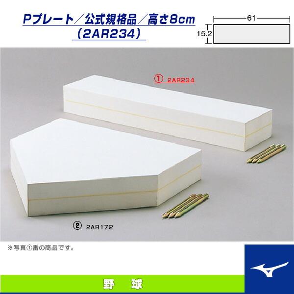 [送料お見積り]Pプレート/公式規格品/高さ8cm(2AR234)