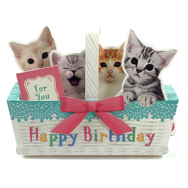 Music birthday card Birthday Card greeting card 誕 which birthday card  melody card P240 cat basket Sanrio kittens sing by a cry