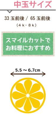 レモン 広島