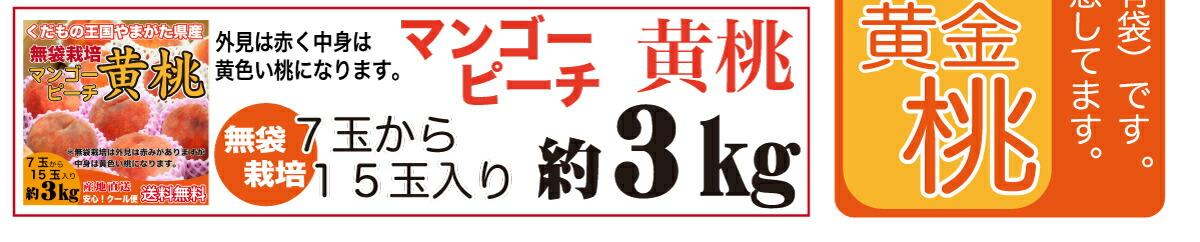 桃カテ11