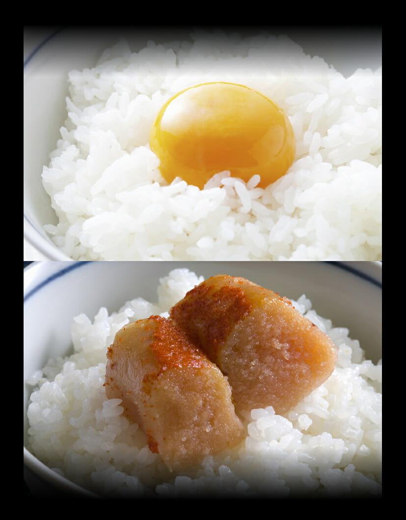 新米長岡産コシヒカリの料理例