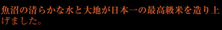 魚沼の清らかな水と大地が日本一の最高級米を造り上げました