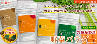 九州産野菜パウダー