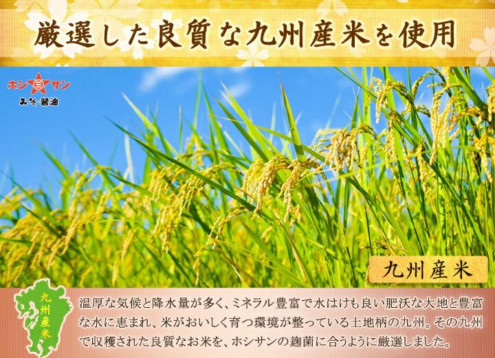 九州産米厳選