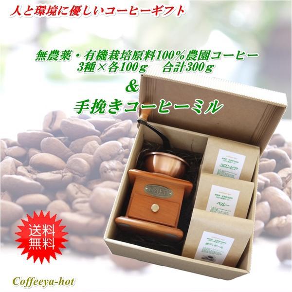 香りのコーヒーギフト