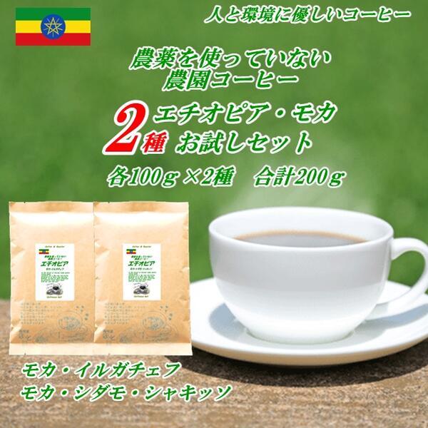 有機エチオピア・モカ セットコーヒー