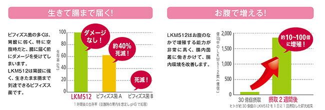 LKM512