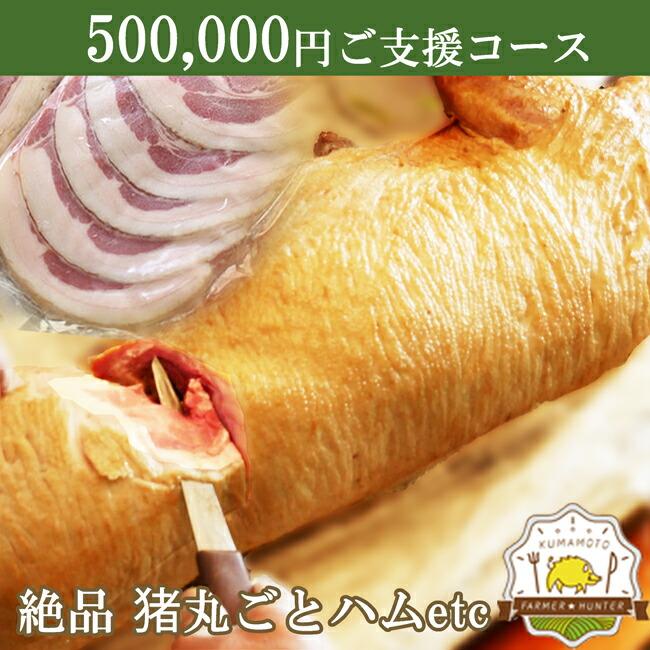 クラウドファンディング 500000円支援コース
