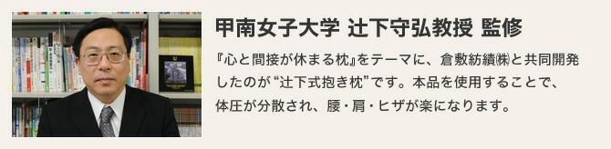 甲南女子大学 辻下守弘教授 監修