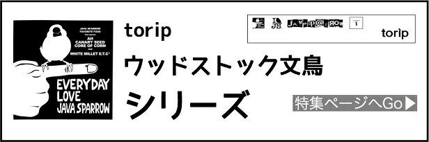 torip