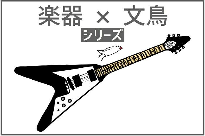 文鳥×楽器