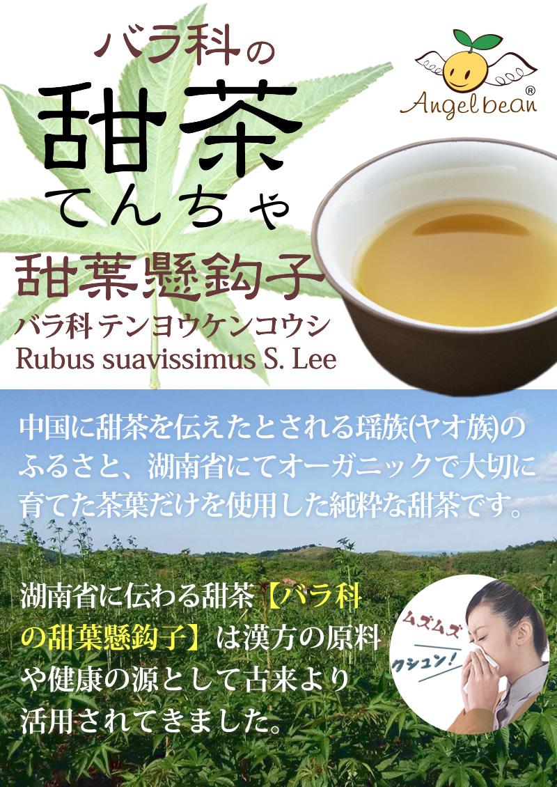 バラ科の甜茶、甜葉懸鈎子テンヨウケンコウシ。中国湖南省にてオーガニックで大切に育てた茶葉だけを使用した純粋な甜茶です