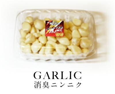 garlic / 消臭ニンニク