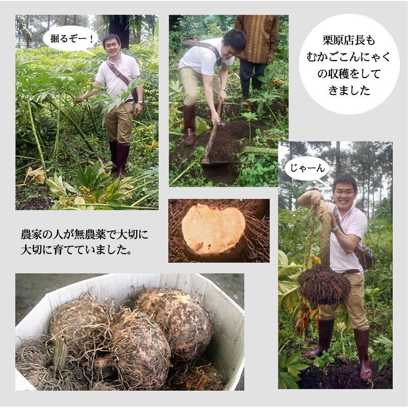 農家の人たちが無農薬で大切に大切に育てていました