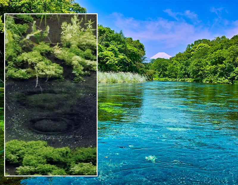 富士の湧水をたっぷり