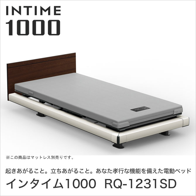 INTIME1000 RQ-1231SD