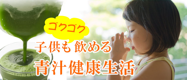 青汁 国産 青汁 ダイエット 青汁 ケール粉末 乳酸菌 山本漢方 伊藤園 ヤクルト プロテイン