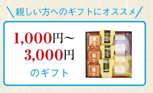 1000〜3000