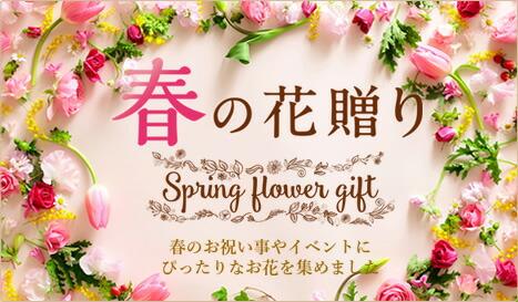 春の花贈り特集TOP
