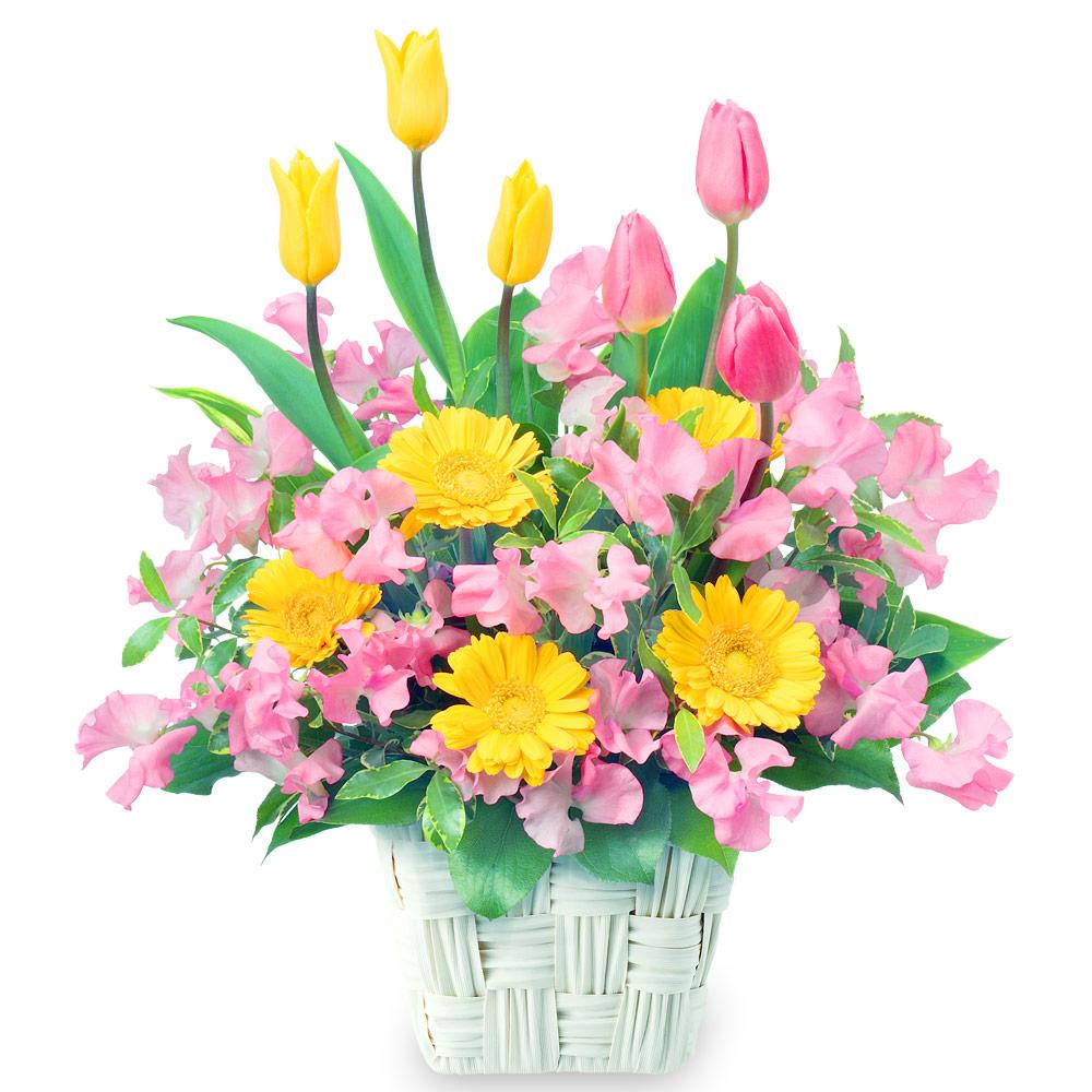 【バレンタイン特集】春のバスケットアレンジメント 111028 |花キューピットのフラワーバレンタイン特集2020