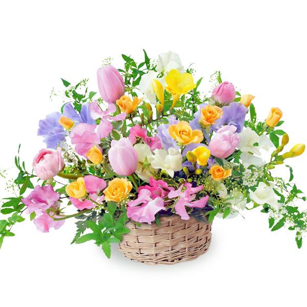 【チューリップ特集】カラフルなアレンジメント 111029 |花キューピットの2020チューリップ特集特集